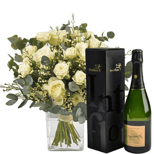 coton et champagne S